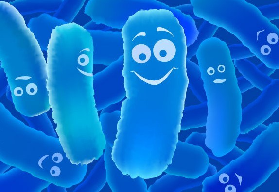 Bactérias sorridentes